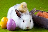 Die besten Ostergeschenke für coole Kids